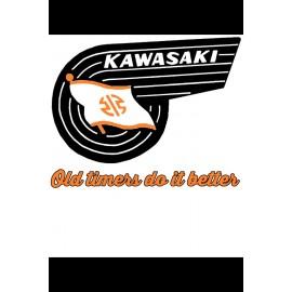 Tee Shirt Kawasaki