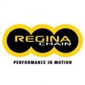 Chaine Regina 520 EBXL 110 maillons