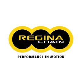 Chaine Regina 520 EBXL 102 maillons